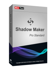 Official MiniTool ShadowMaker Pro 3.1 Standard CD Key Global